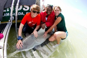 Our Principal, Ms Awofadeju helping University of Miami to save sharks in the Keys.